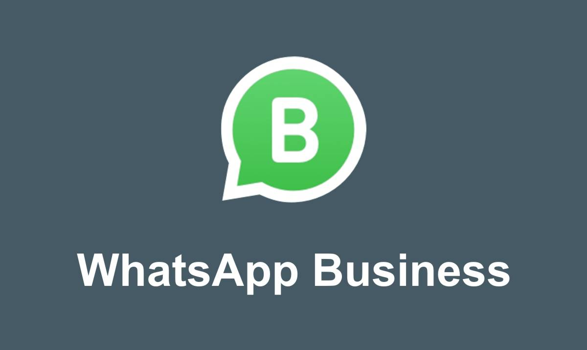 WhatsApp Business a cosa serve e come si usa